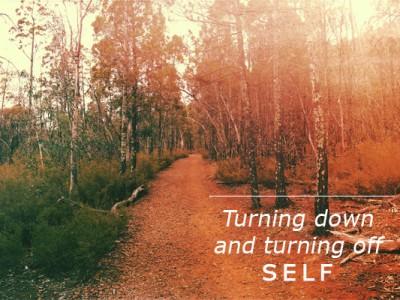 WT_1_Turning_off_self